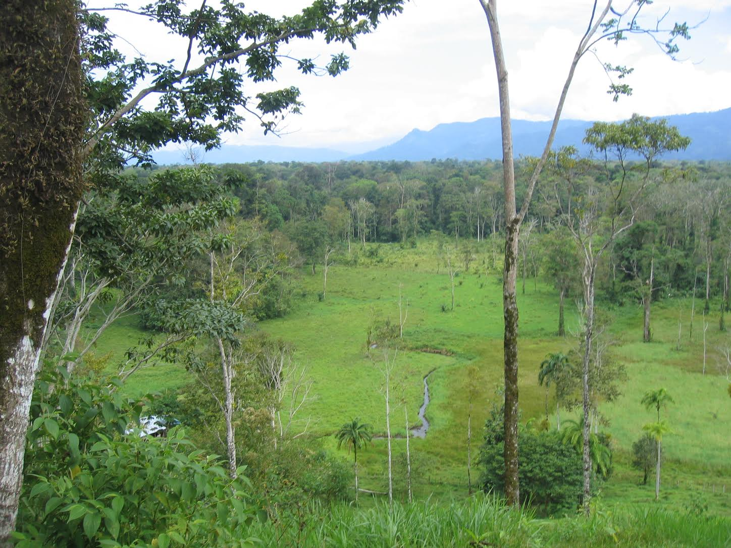Bocas del Toro Farms For Sale