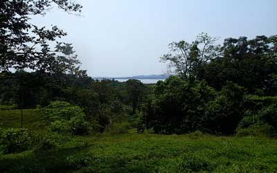 Bocas del Toro Land For Sale